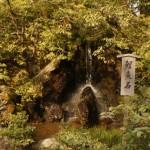 the-ryumon-taki-carp-rock-kinkakuji-temple