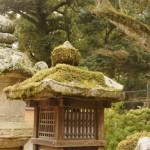 Kasuha_taisha_shrine_NARA
