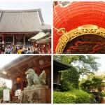 senso-ji-asakusa-shrine