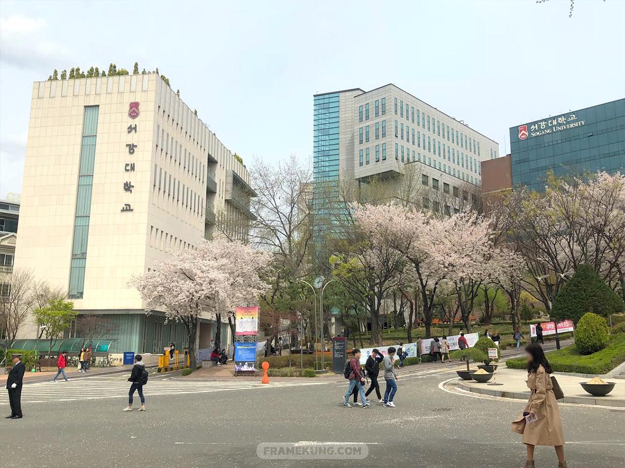 หนังสือเรียนภาษาเกาหลี มหาวิทยาลัยซอกัง Sogang Korean Textbook